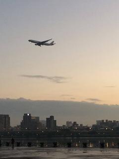 747CDA1E-DA98-4DDE-BBD6-0182C09EFAEE.jpeg